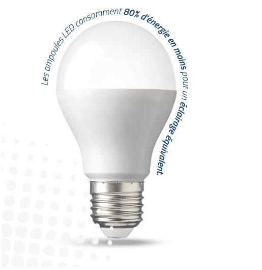 Opération Ampoules Gratuites Caléo